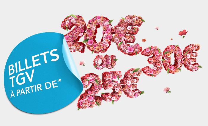 Illustration SNCF fleurs