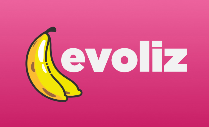 Evoliz – reveal logo